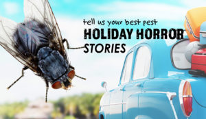 Summer Pests: Holiday Horror